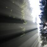 Licht kommt um die Ecke