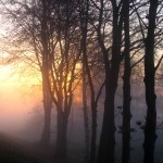 pastellfarbener Sonnenaufgang