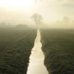 Nebel am Wassergraben