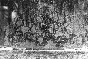 Steinspuren