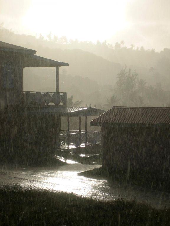Tropenregen