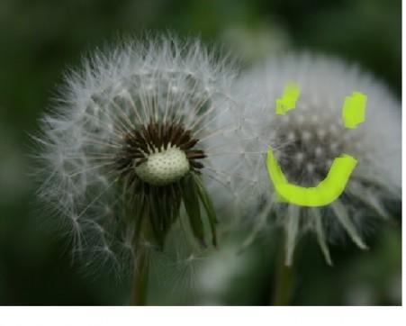 Pusteblumen-Smiley
