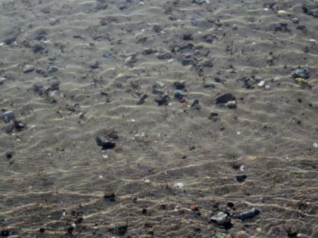 Seegrund