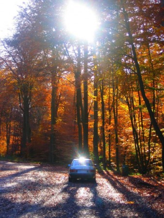 Auto in der Sonne