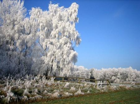 Wintermärchen Landschaft